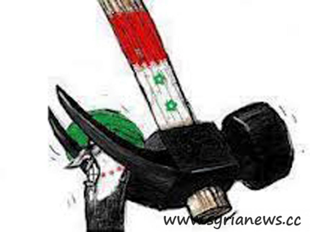 SAA Removing Al Qaeda FSA