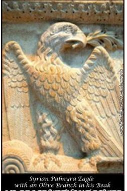 syrian eagle syria remains