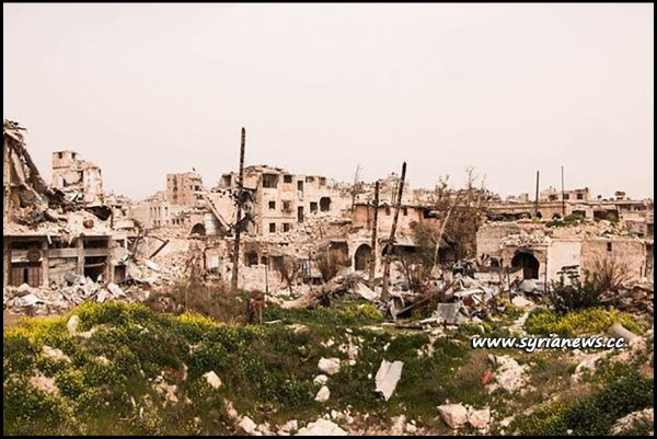 image-Aleppo, Syria - nature had enough time to reclaim its due -This shows how long those people have been enduring this war