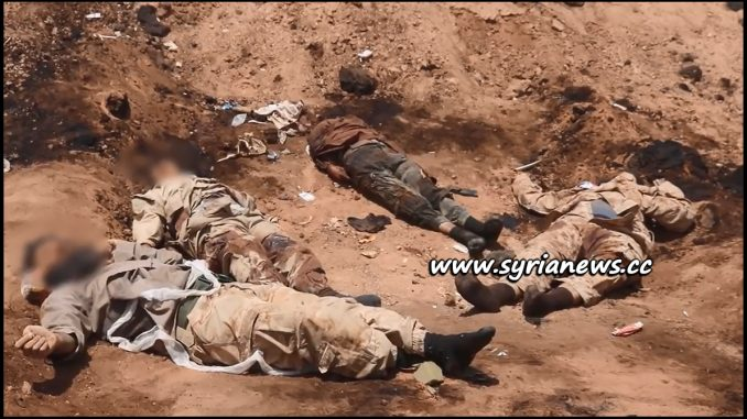 image-Graphic: SAA Kills Dozens of ISIS Terrorists in Mayadeen Countryside