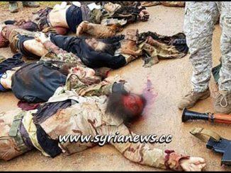 SAA Eliminates Turkey-Sponsored Terrorists in Northern Hama