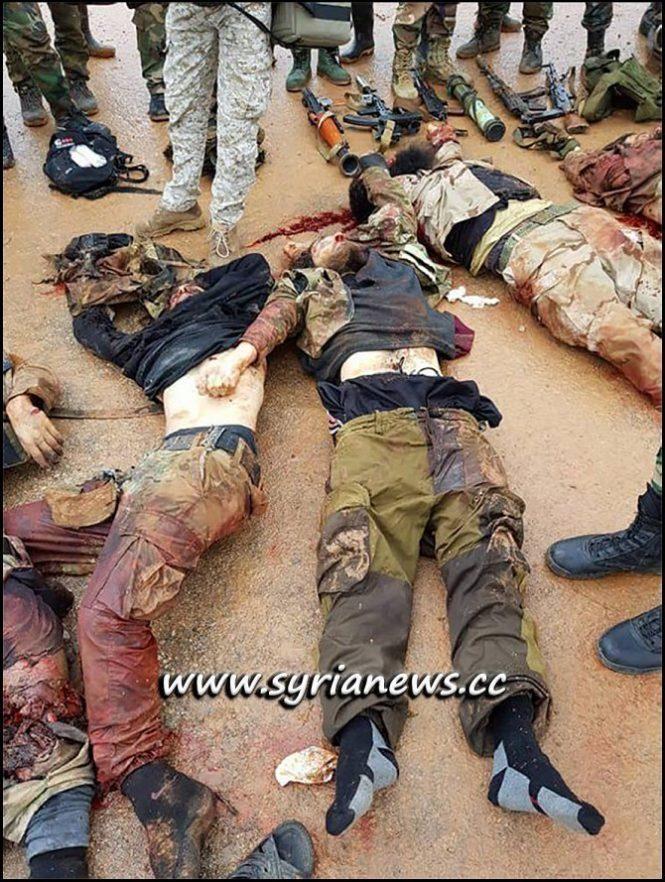 SAA Kill Erdogan Terrorists in Northern Hama